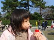 20080329_040